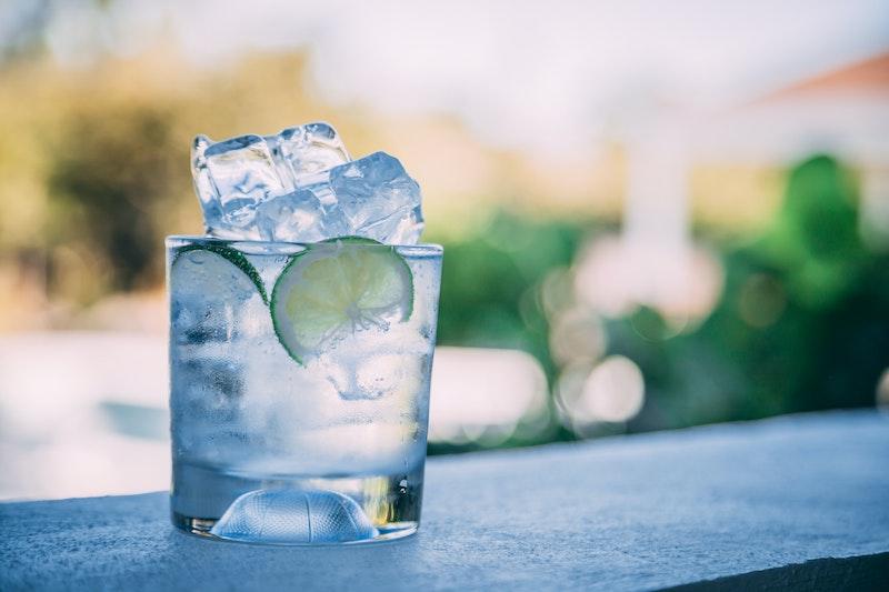 gin garnishes