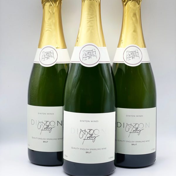 Dinton Folly English Sparkling Wine