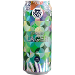 Severn Brewing Lager 440ml